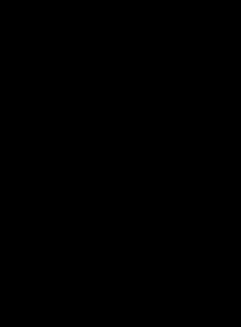 Logo de Laura Robles rotada